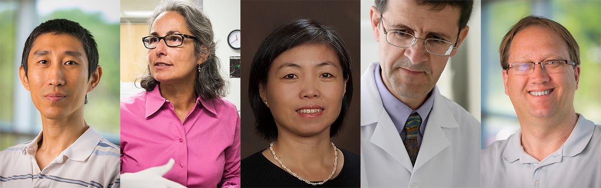 Waisman investigators Qiang Chang, Anita Bhattacharyya, Xinyu Zhao, Luigi Puglielli and John Svaren (left to right)