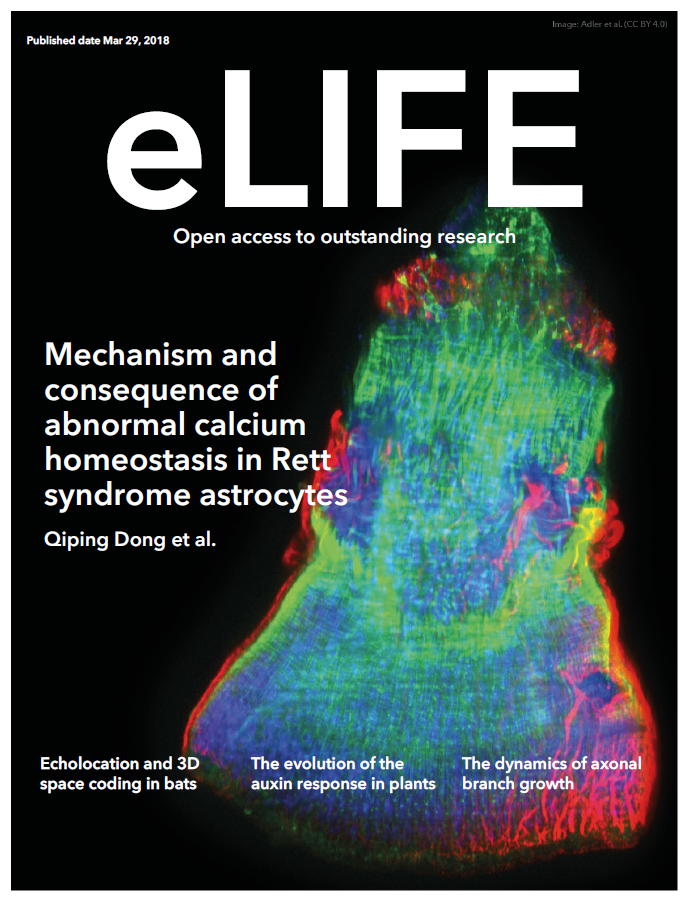 Cover of the journal eLIFE highlighting Chang's research