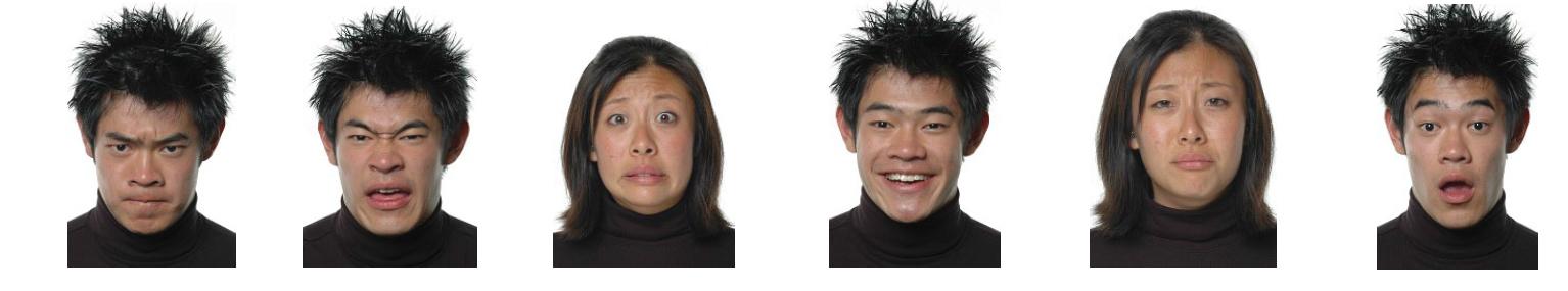 Seth Pollak - facial images