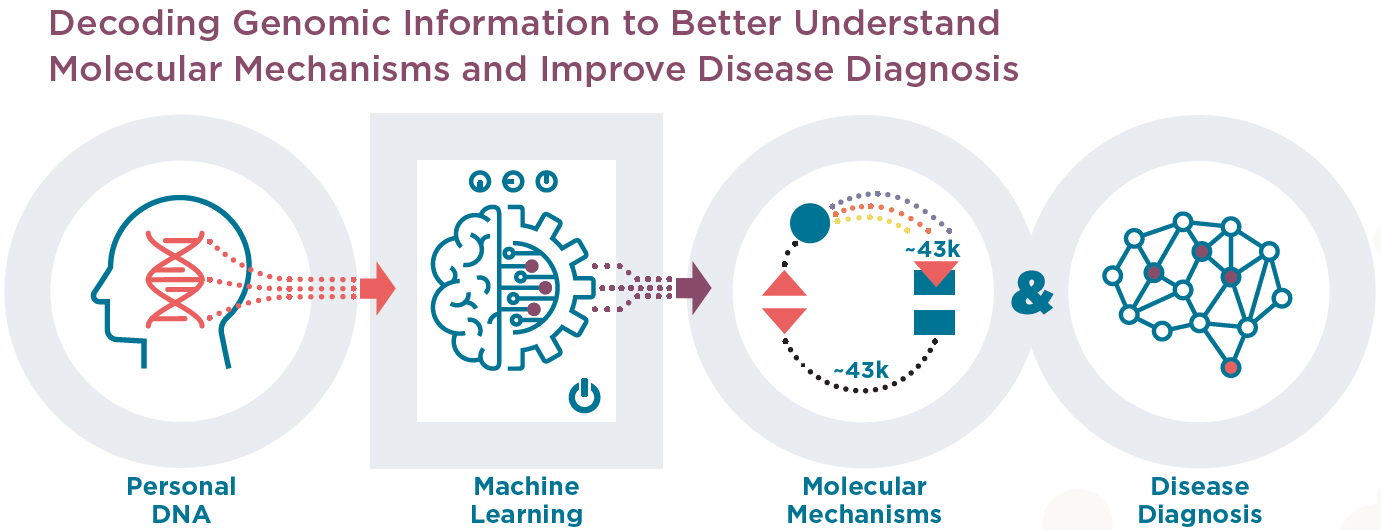 Decoding Genomic Information to Better Understand Molecular Mechanisms and Improve Disease Diagnosis