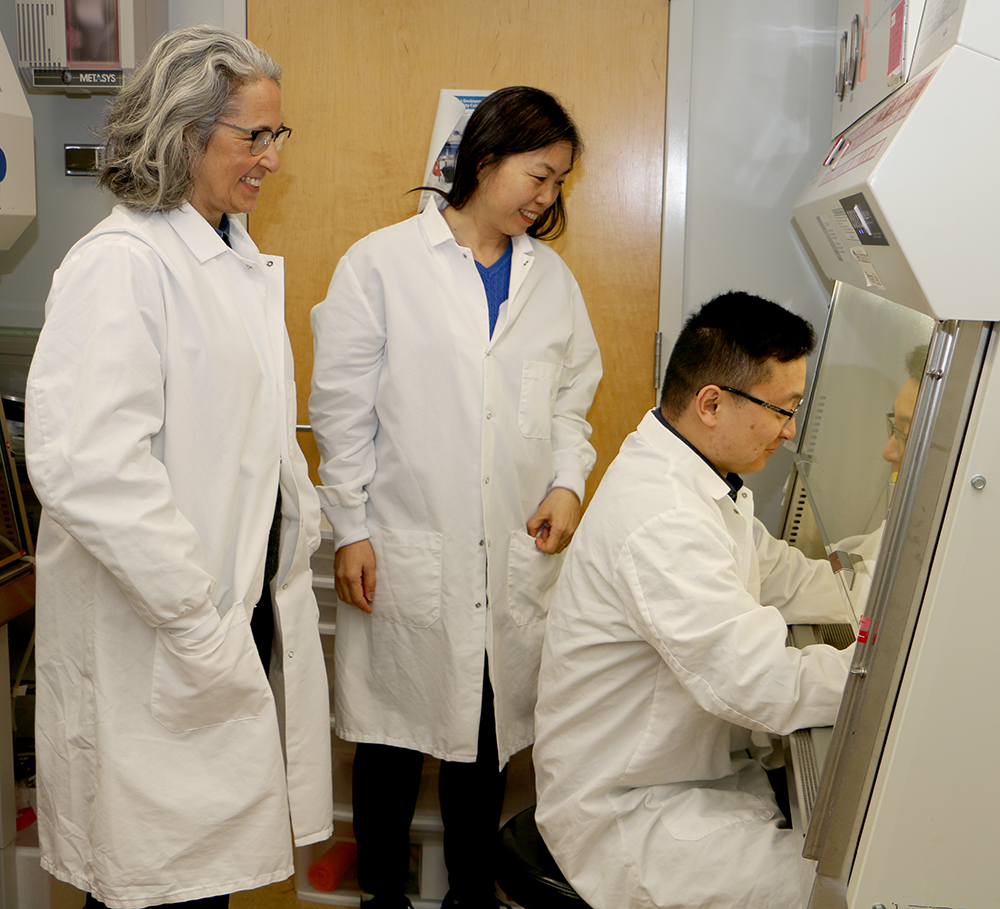 Anita Bhattacharyyar, Xinju Zhao, and Minjie Shen