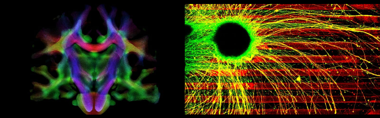 Cool Sciences images